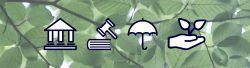 Article : Règlement européen Disclosure et Assurance